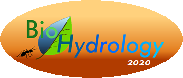 Plants' role in the hydrological cycle